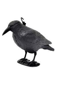 "Product Σκιάχτρο Πουλιών ¨Κοράκι"" Garden Pleasure 504271 base image"