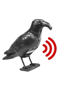 "Product Σκιάχτρο Πουλιών ""Κοράκι"" Με Αισθητήρα Κίνησης Lifetime Garden 02322 base image"