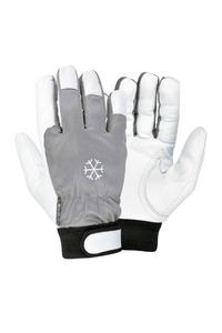 Product Γάντια Ψύχους Δερμάτινα Με Velcro Cofra No10 XL base image